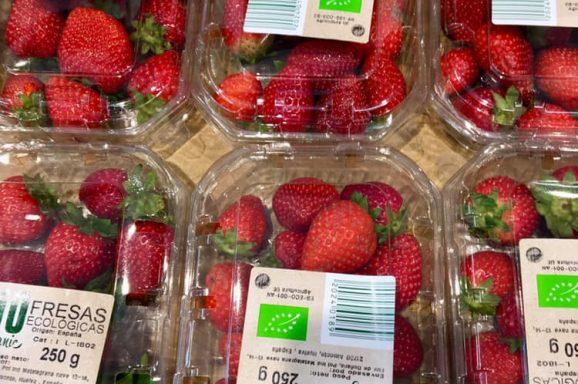 The Organic Paradox